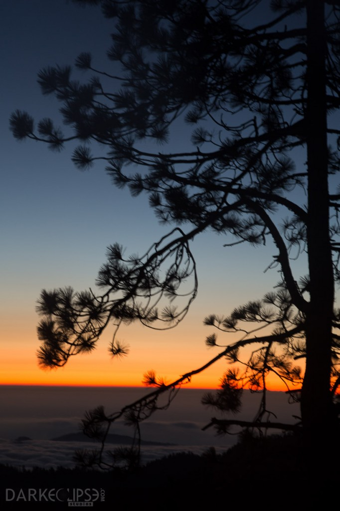 SEQUOIA NATIONAL PARK SUNSET-7738