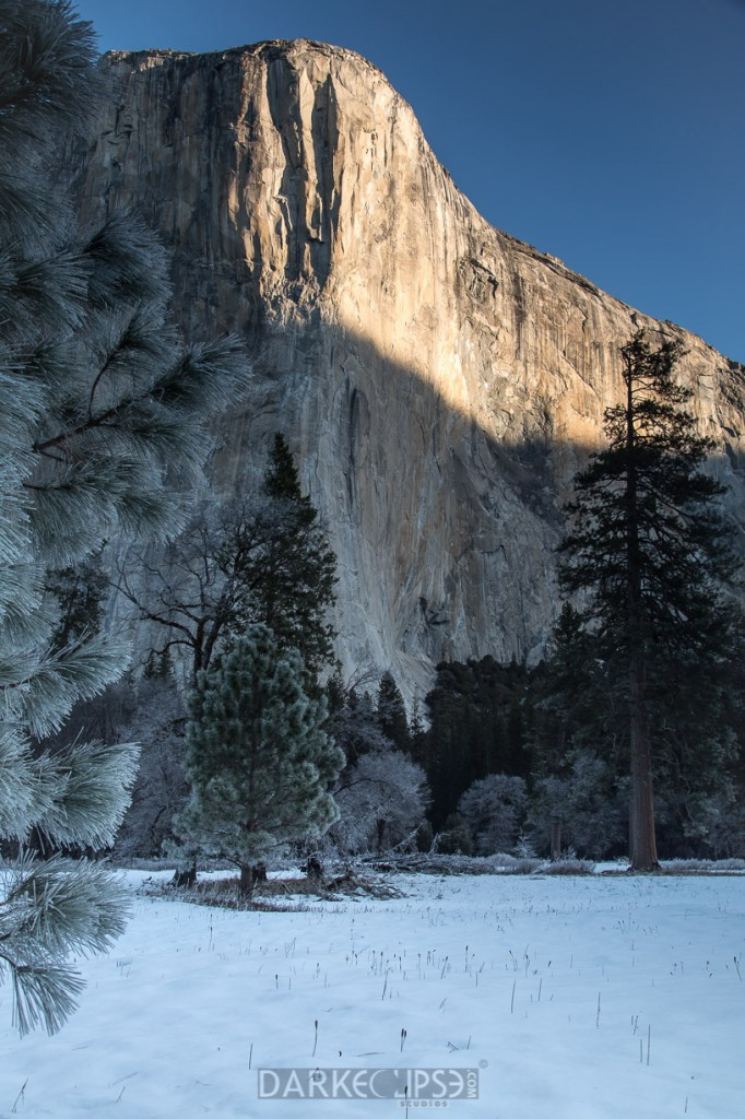 YOSEMITE NATIONAL PARK - SUNRISE EL CAPITAN-8658